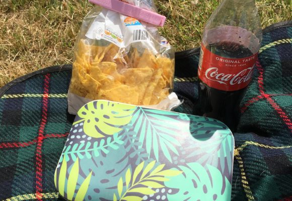 My Picnic Essentials